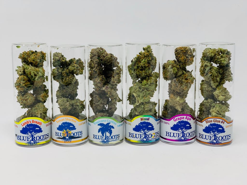 Recreational Marijuana Dispensary